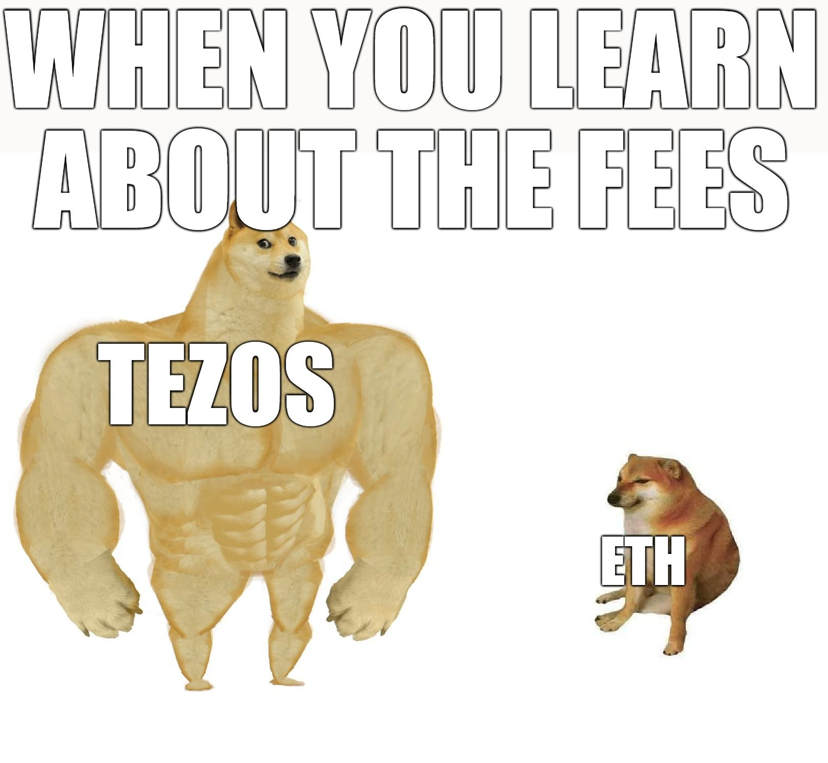 When you learn about the fees, Tezos wins!